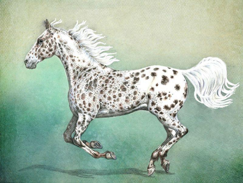 А3, бумага, цветные  карандаши, фон- фотошоп #art #coloredpencil #drawing #horse