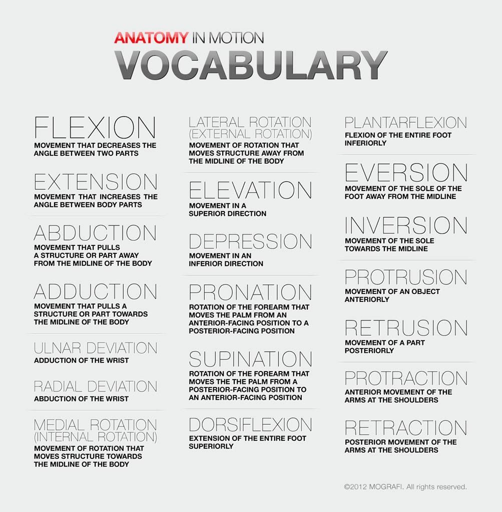 Movement vocabulary from Anatomy in Motion | Massage therapy | Pinterest
