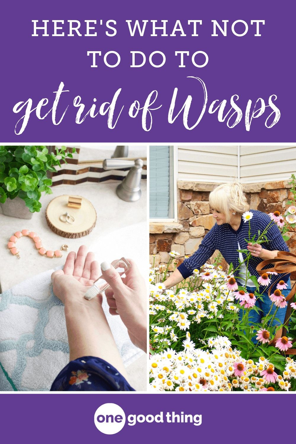 how to deter wasps from deck