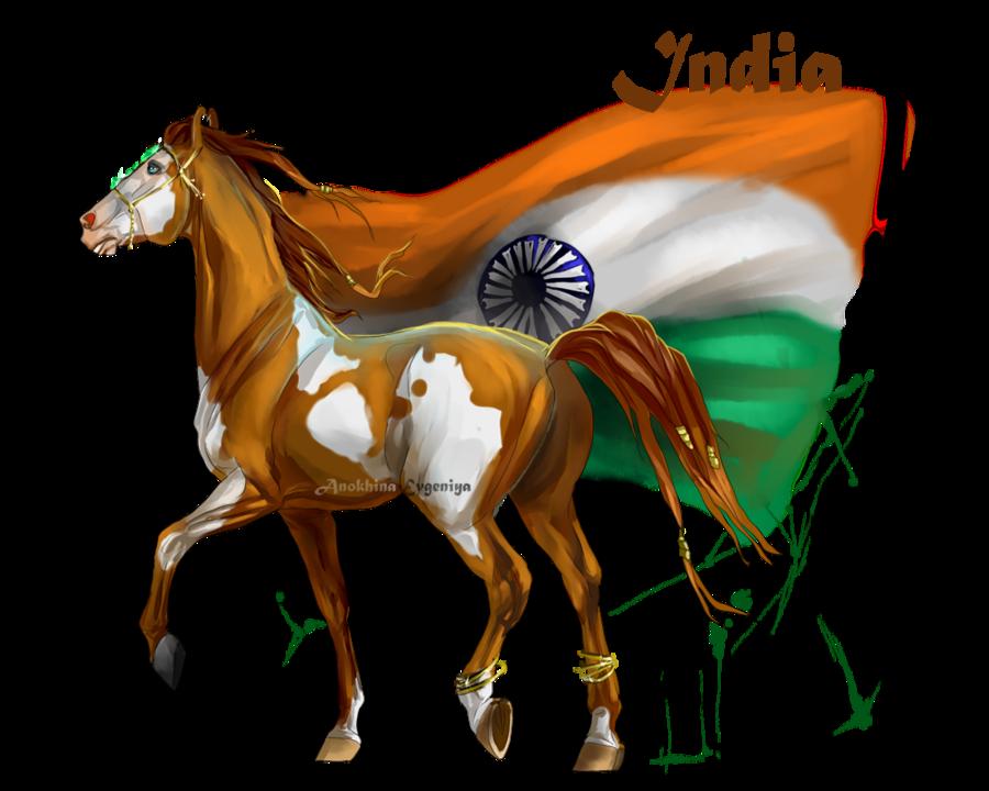Horse Hetalia: India by Moon-illusion on deviantART