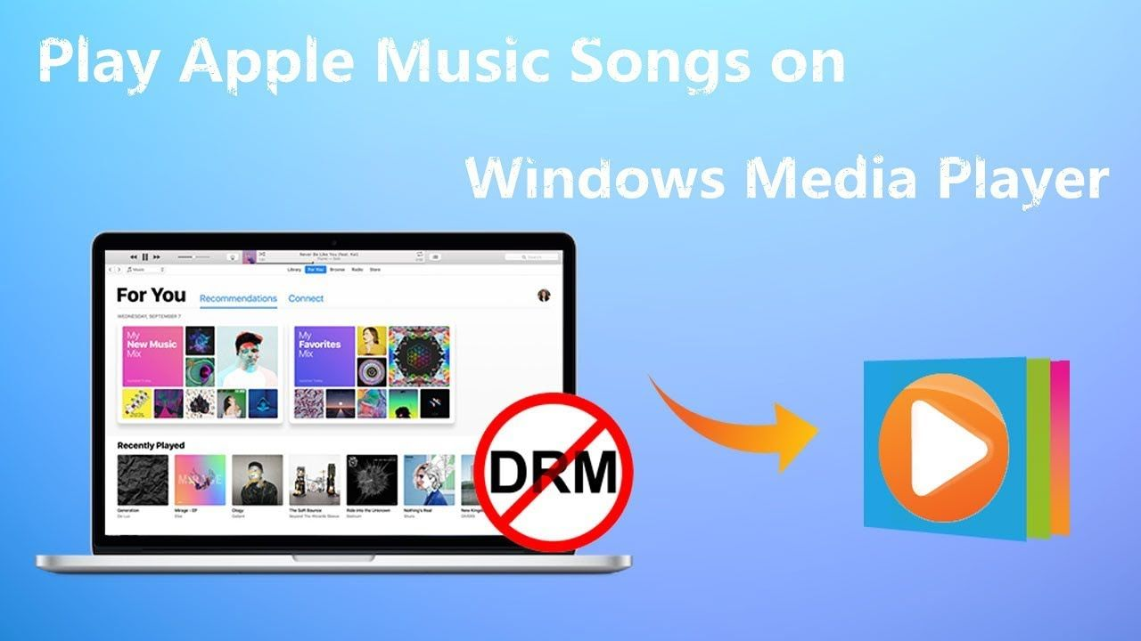 How To Import Songs From Apple Music To Windows Media Player Apple Music Music Converter Songs