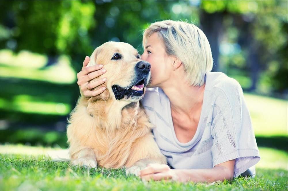 Science Says Grieving For Our Pets is Human (With images