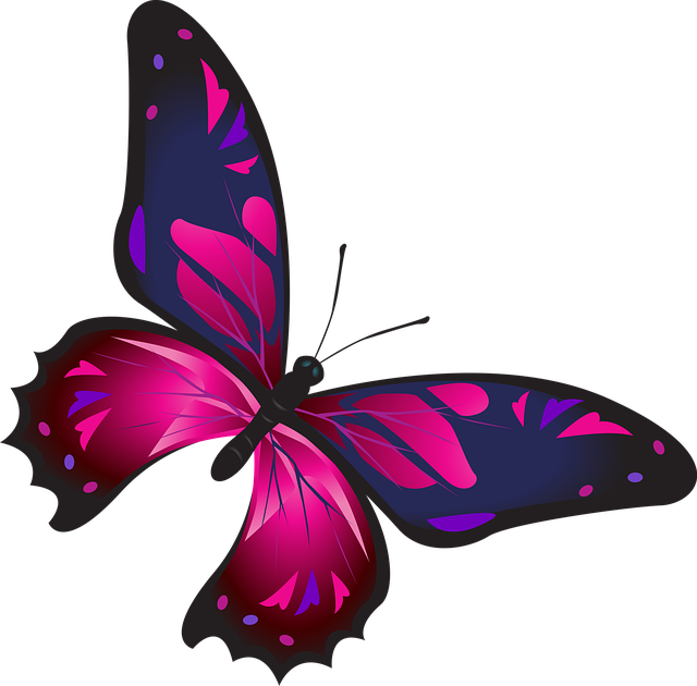فراشة لونها موف Butterfly Pictures Butterfly Images Butterfly Art