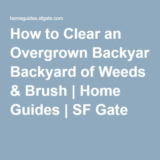 How to clear an overgrown backyard of weeds brush