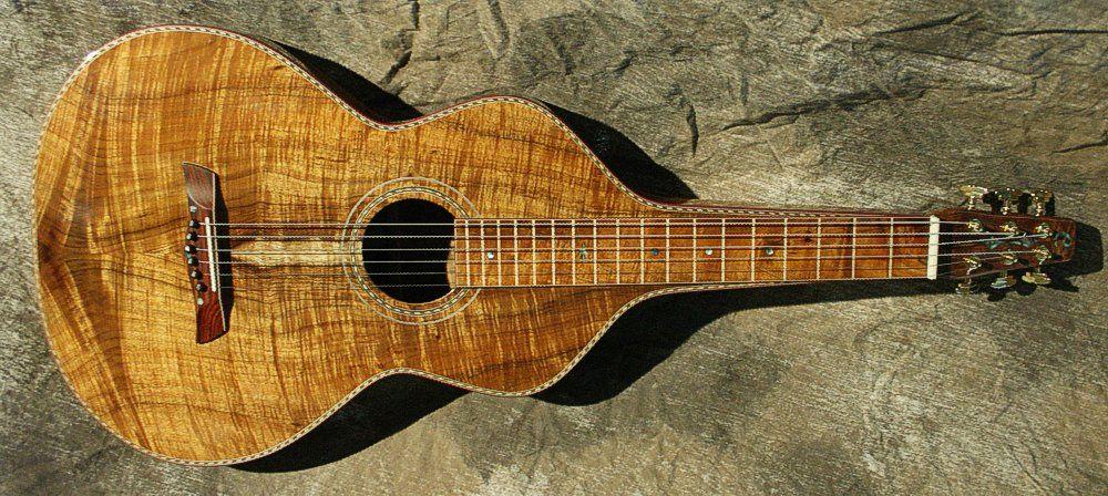 guitare weissenborn