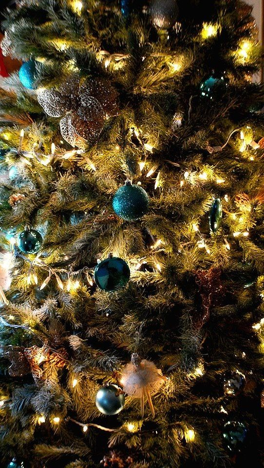 Our Christmas #1((: