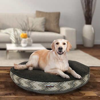 Pin By Rachel Mcclintock On Mascotas In 2020 Dog Ramp For Bed Dog Ramp Dog Boarding Near Me