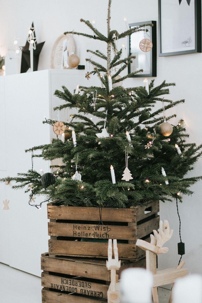 Photo of Disse super raske juletrærne viste seg å være akkurat det rette prosjektet for … – Eksteriørdesign
