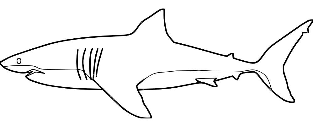 Pin Von Coloring Fun Auf Ocean Life Haie Kostenlose