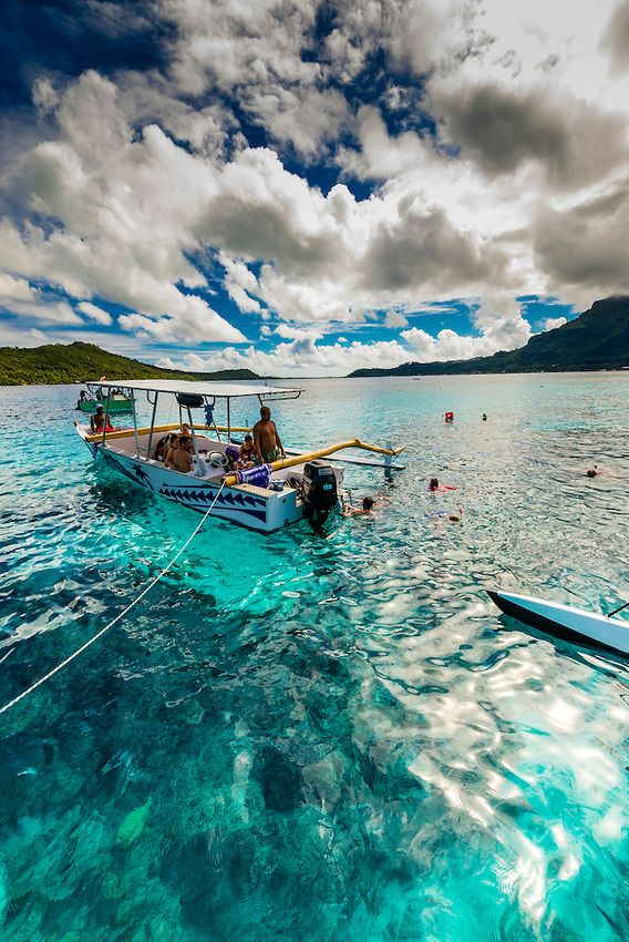 Swimming with stingrays and reef sharks off the island of ...