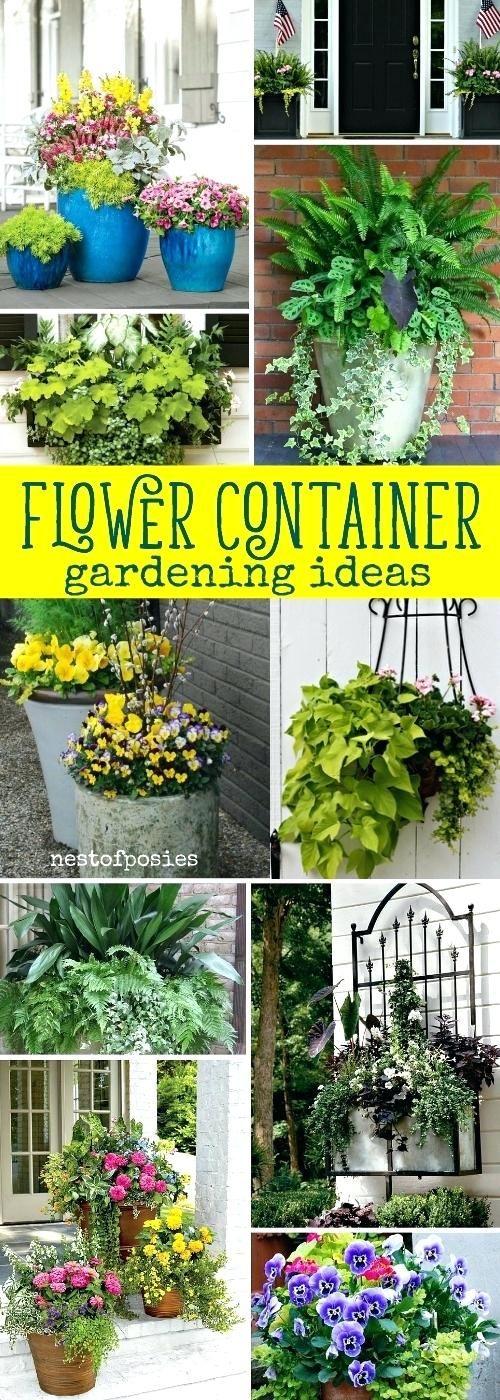 container flower gardening flower container gardening ideas ...