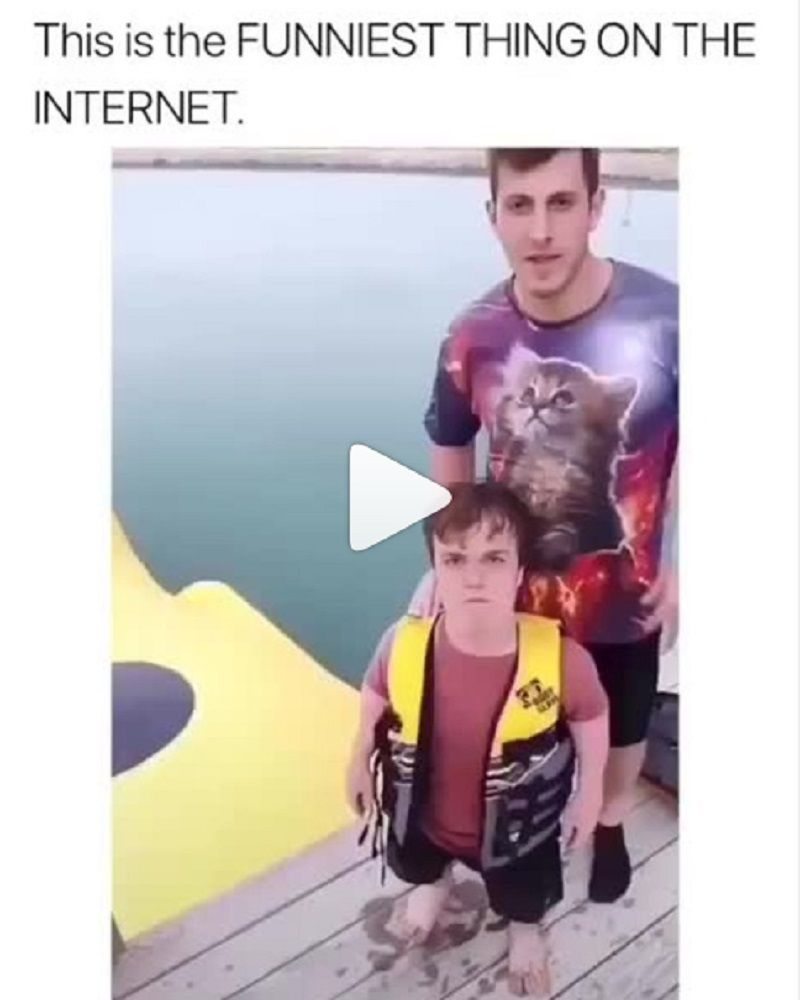 Funniest Pics On Instagram : funniest, instagram, Instagram, Videos