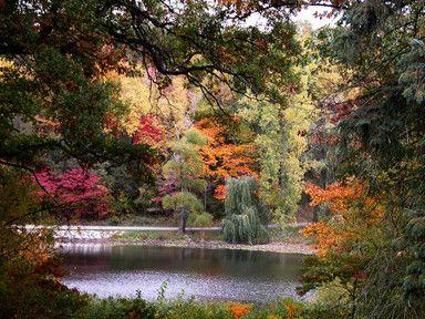 49c6a637036d699489c8d066b2fabef5 - Hidden Lake Gardens In Tipton Michigan