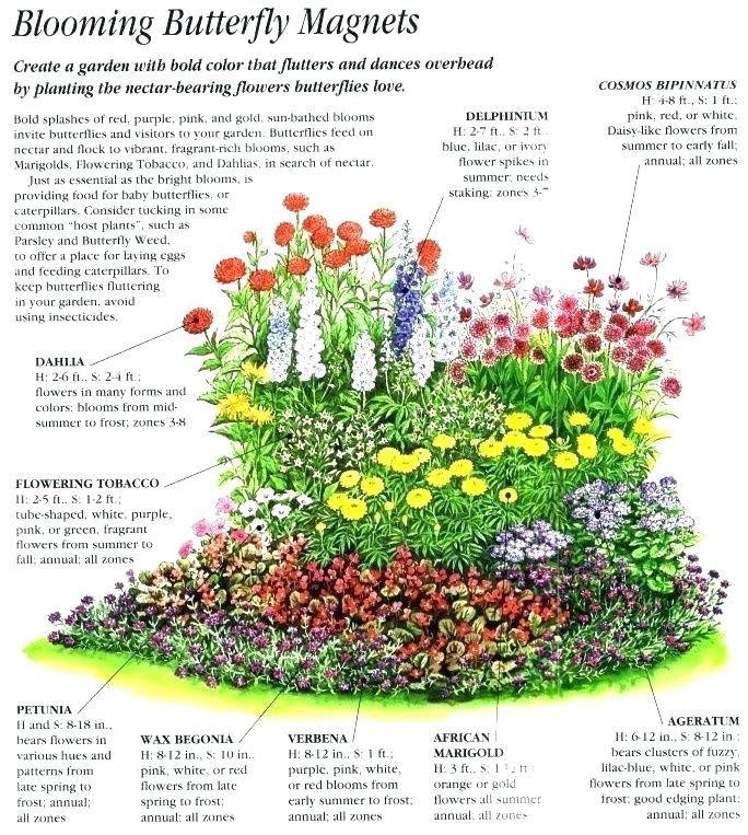 3 season landscaping ideas full sun - Google Search ...