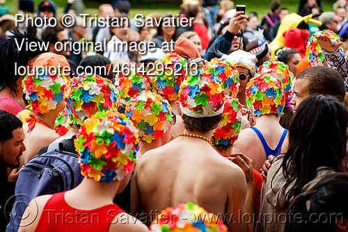 synchronized swimmers, bay to breakers