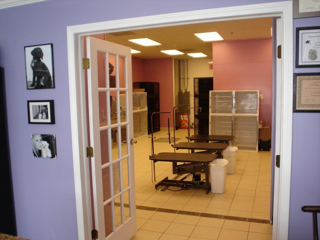 Repinned Grooming Salon By Bella S Grooming Salon Spa Boutique Grooming Salon Grooming Shop Dog Grooming Shop