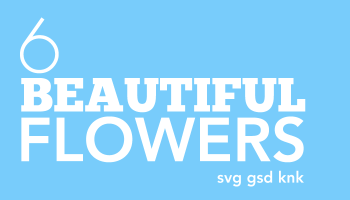 Download 6 Beautiful Flower SVG's GSD's for Scrapbooking and Cards
