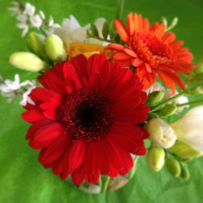 Cheery and inexpensive. For 10 or more tables these centerpieces are ...