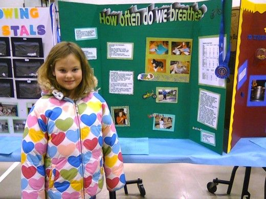 Easy Animal Science Fair Project For Elementary Kids Elementary