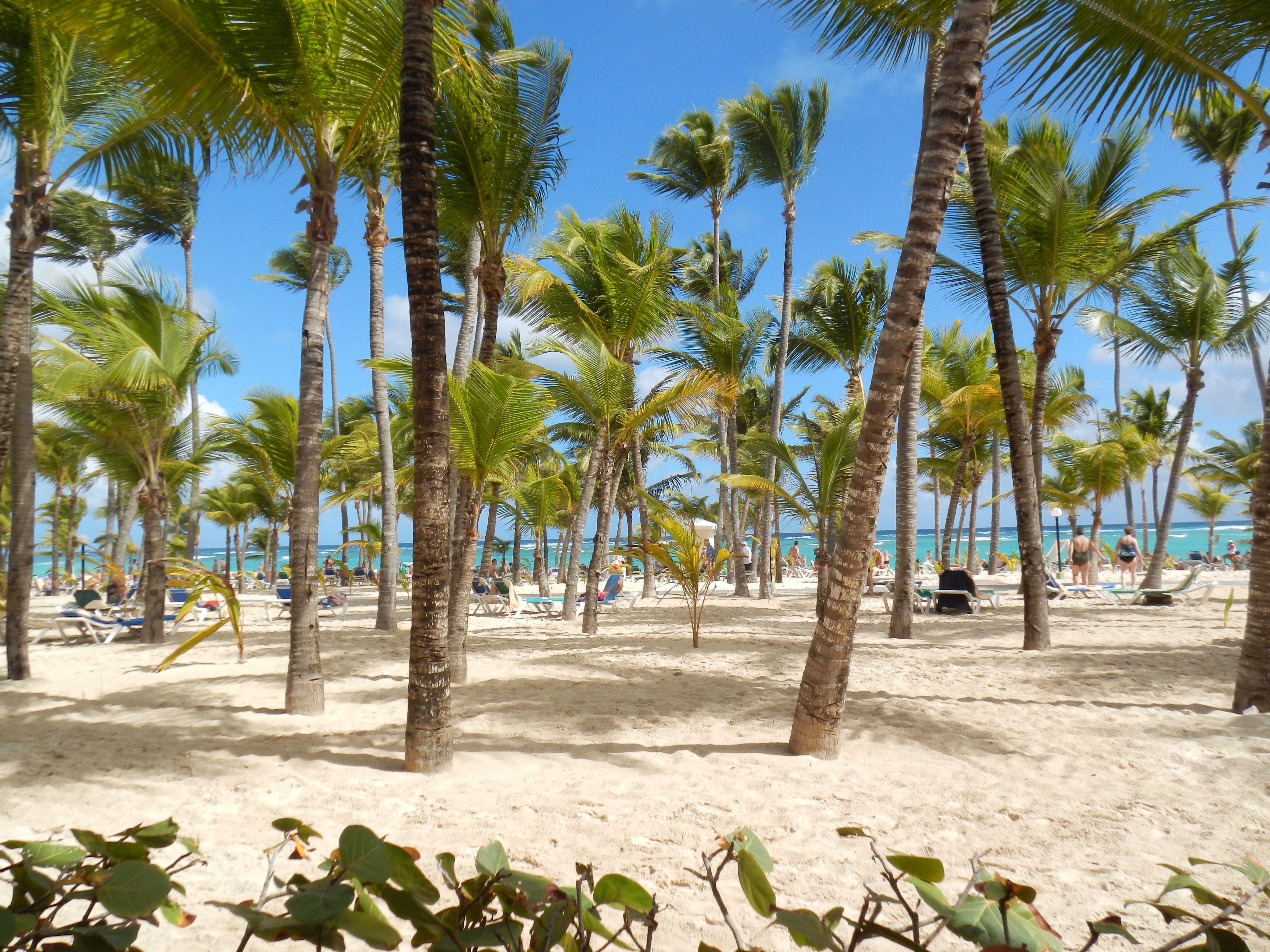 Enjoy The Hotel Riu Palace Punta Cana