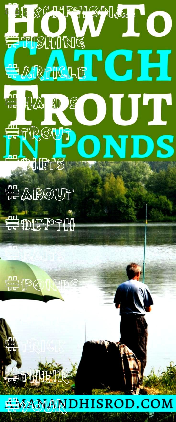 fishing to catch in ponds How to catch trout in ponds is an in depth article about the habits of trout as well as their diets I give you 6 exceptional fishing to use on y...