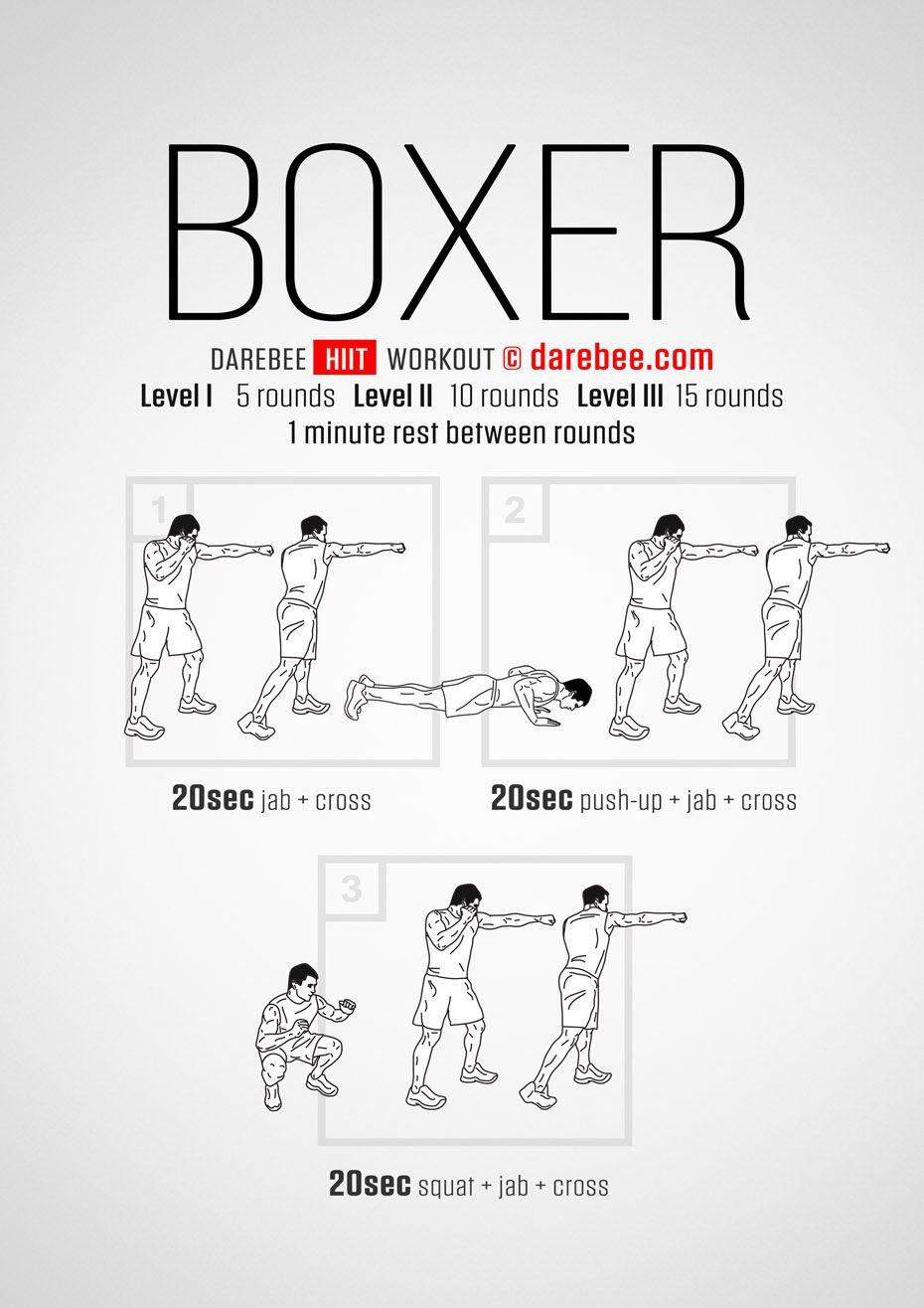 Boxer HIIT Workout-Boxers have phenomenal limb speed, arm