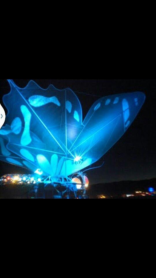 Butterfly glow float | Butterflylvr | Pinterest