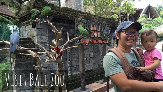 Bali Zoo Review vs Bali Safari Marine Park | Bali vacation ...