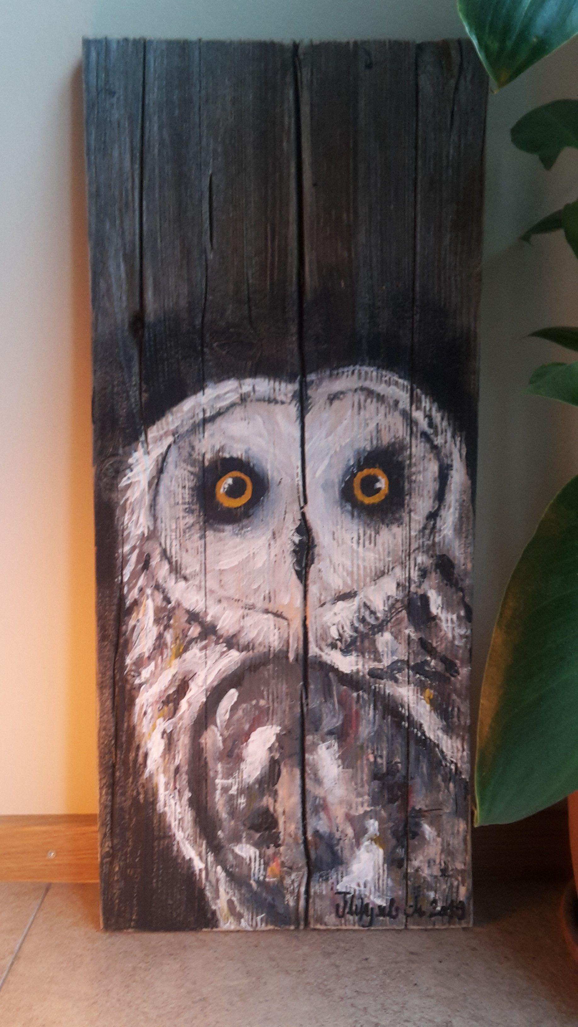 Holzbrett Mit Acryl Bemalt Holz Brett Holzbemalen Eule Owl