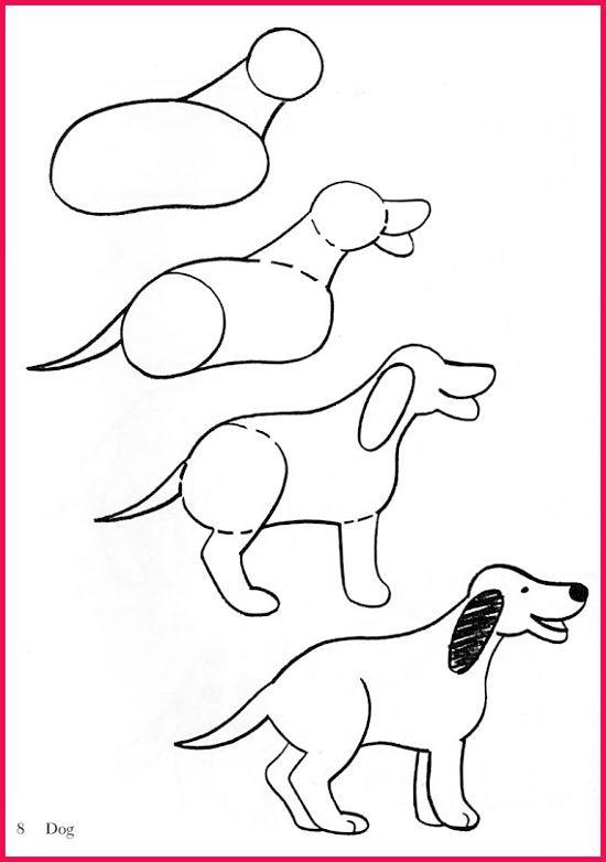 Dibujos Faciles Para Principiantes3 Como Dibujar Animales Faciles Como Dibujar Animales Perros Para Dibujar Faciles