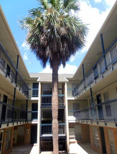 Apartments At Louisiana State University Ucribs Louisiana State University Louisiana State State University