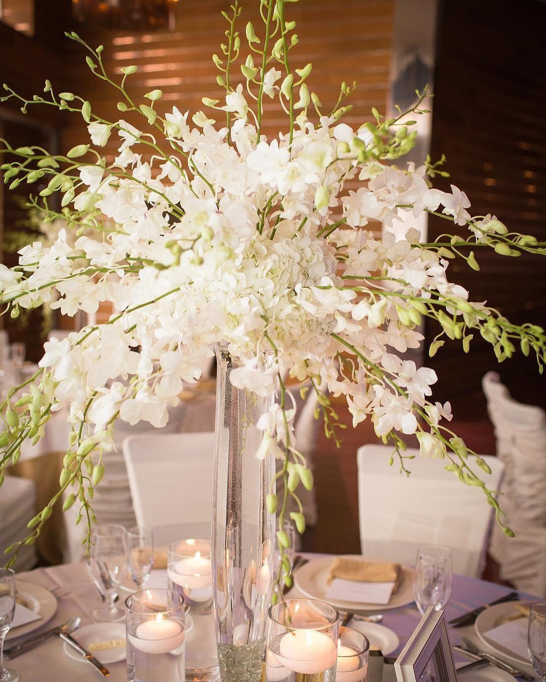 Follow las vegas wedding planner paulina clute las