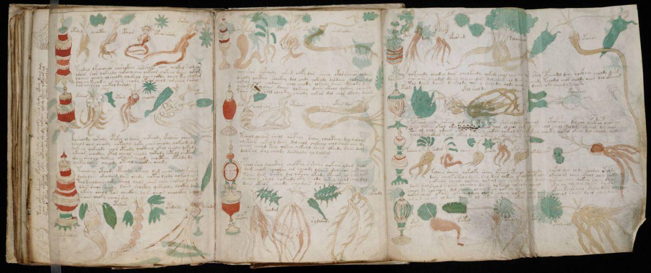 El Manuscrito Voynich es tal vez el libro más extraño y misterioso del mundo, y…