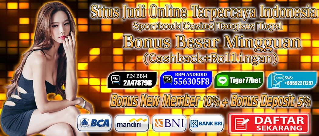 Agen Tiger77 menawarkan Main Judi Situs Live Blackjack dengan mudah menggunakan Smartphone Android anda dengan Bonus Setiap Deposit yang bisa anda dapatkan 5%