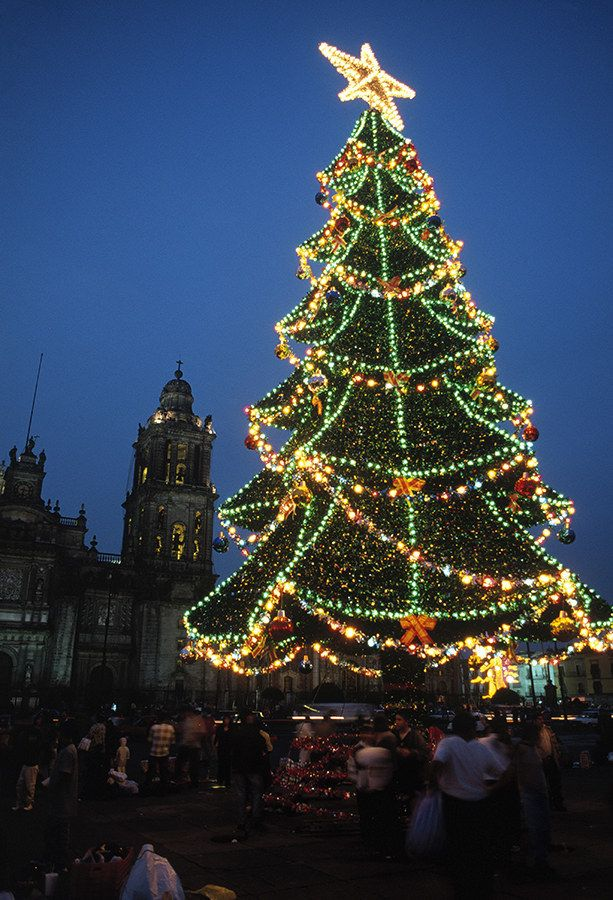 10 of the worlds best christmas trees trees christmas trees this tree in mexico city mexico 10 of the worlds best christmas trees sciox Image collections