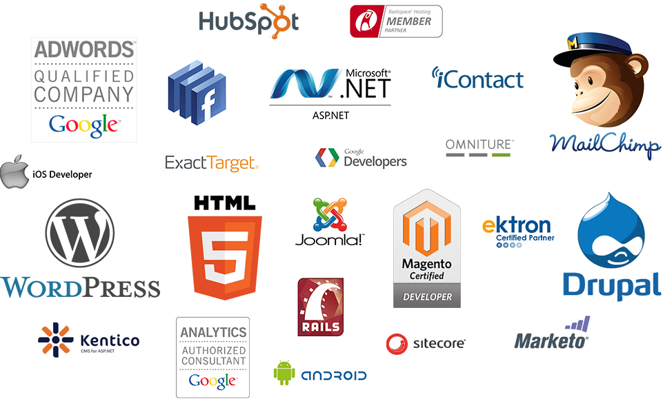 Silicon Valley have an expert team of web designers and