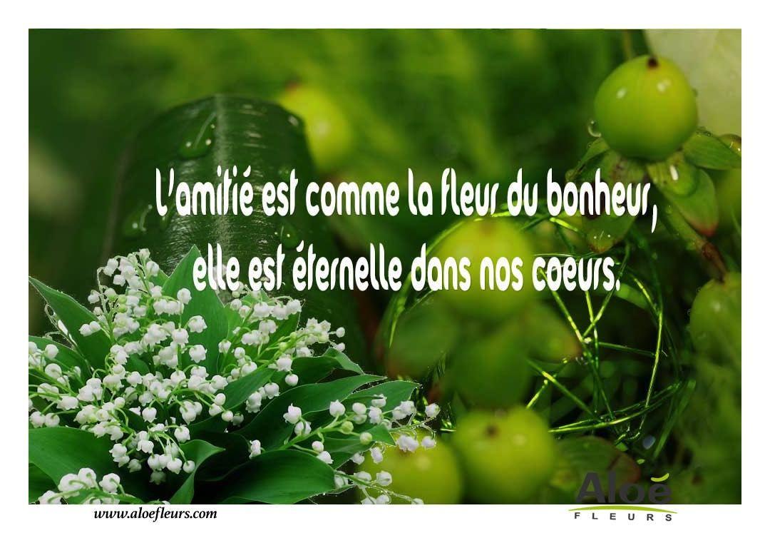 Célèbre 1er Mai Message L'amitié Est Comme La Fleur Du Bonheur,elle Est  PK31