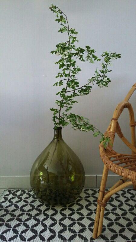 bonbonne dame jeanne vert bouteille bel ppi pinterest vert bouteille jeanne et bouteille. Black Bedroom Furniture Sets. Home Design Ideas