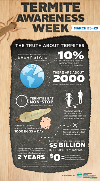 Infographic Of Interesting Facts About Termites Termites Termite Control Termite Treatment