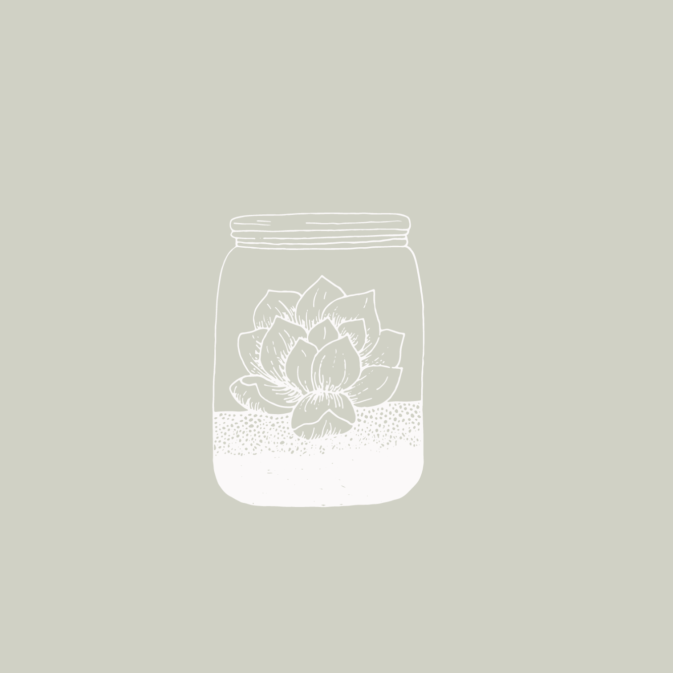 Illustration from thedayproject succulent plant house
