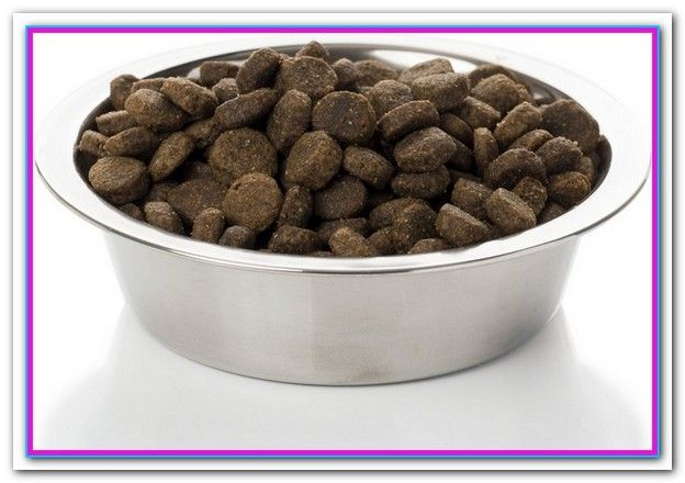 Best Large Breed Dog Food For Allergies Top Rated Dog Food