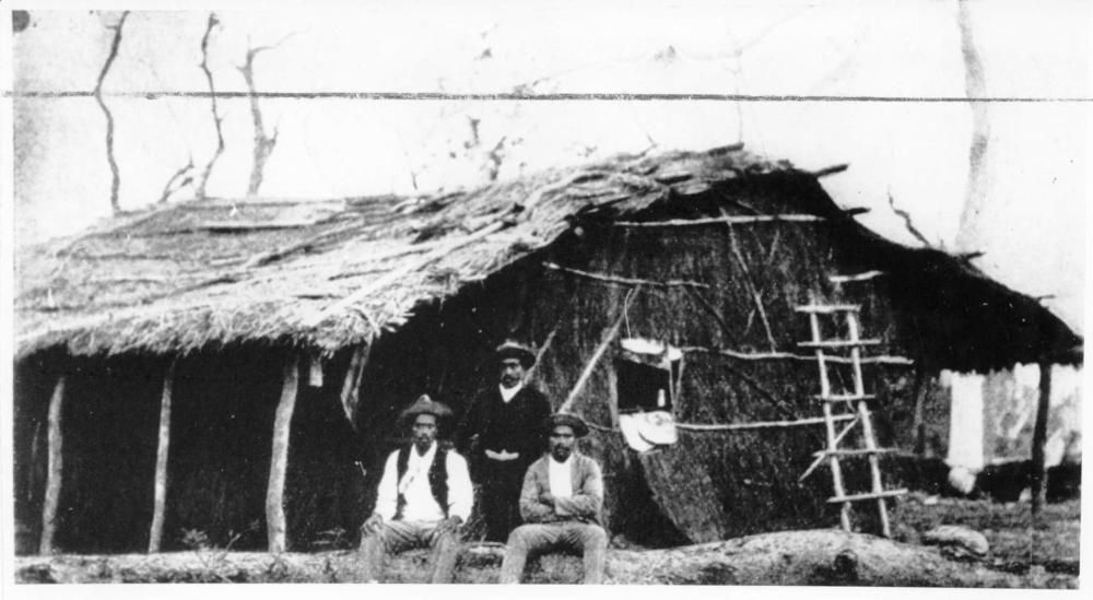 Australian South Sea Islander quarters on a sugar plantation, Lower Burdekin, ca.1900
