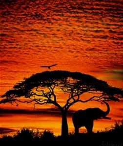 Pin By South African Tourism Company On South African Scenic Images