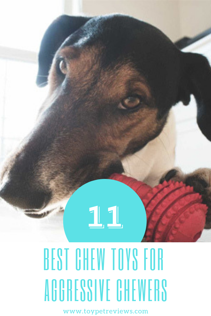 11 Best Chew Toys For Aggressive Chewers Dog Toys Indestructable Kong Dog Toys Best Dog Toys