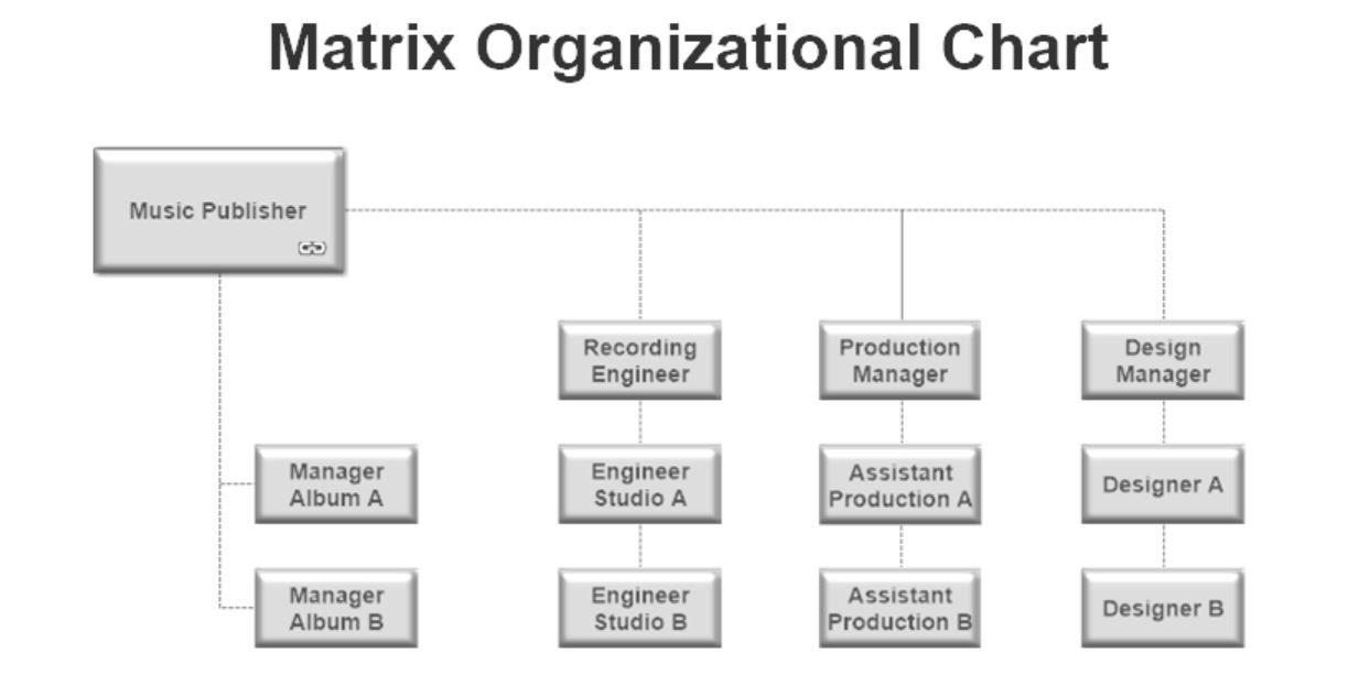 Matrix Organizational Chart Example Business Organizational Structure Organizational Structure Organizational