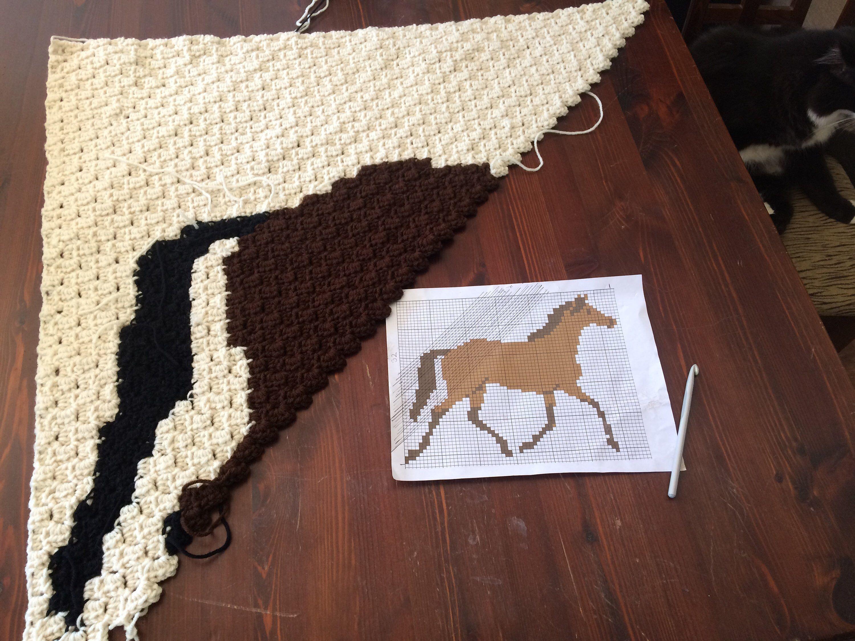 C2c crochet pattern horse horse blanket c2c pattern