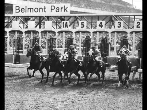 SECRETARIAT  Greatest Race Horse of All Time   Kentucky Derby Preakness ...