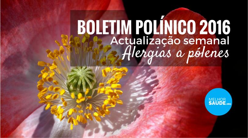 Boletim polínico 2016 melhorsaude.org melhor blog de saude