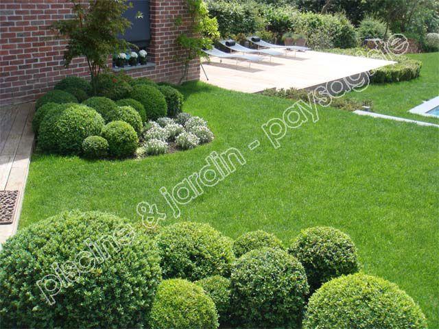 Jardin moderne avec buis boule, gazon et terrasse en bois exotique ...