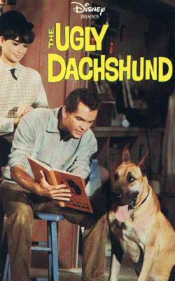 Really Cute Movie More About The Great Dane Than Doxies But Cute